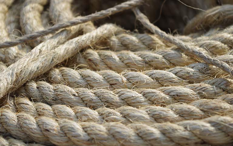 一级白棕绳2